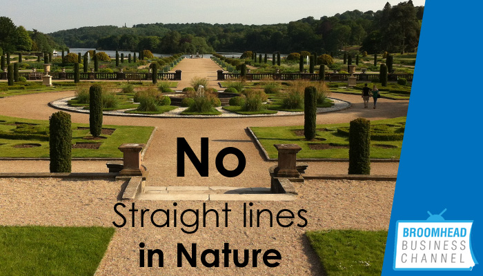no-straight-lines-in-nature-image-by-matthew-broomhead